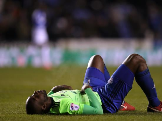 Cardiff denied win at Millwall as late effort disallowed