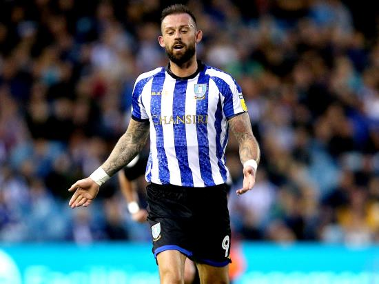 Sheffield Wed vs Manchester City - Steven Fletcher could return for Manchester City clash