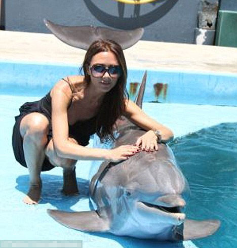 Beckham smirks as she cosies up to a dolphin in candid Twitter photo