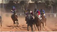 Tripoli stages first horse race since fall of Gaddafi regime