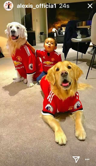 Alexis Sanchez's dogs wear Manchester United shirts after arriving at team hotel