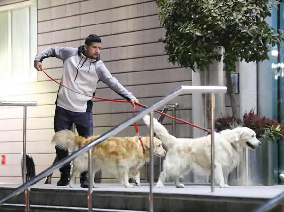 Alexis Sanchez given special permission by Lowry Hotel to allow his beloved dogs to stay after Manchester United move